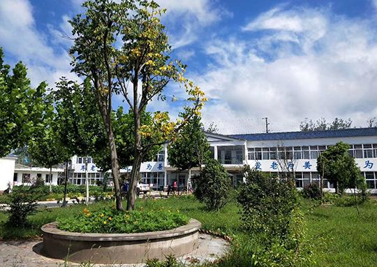 院内绿化环境