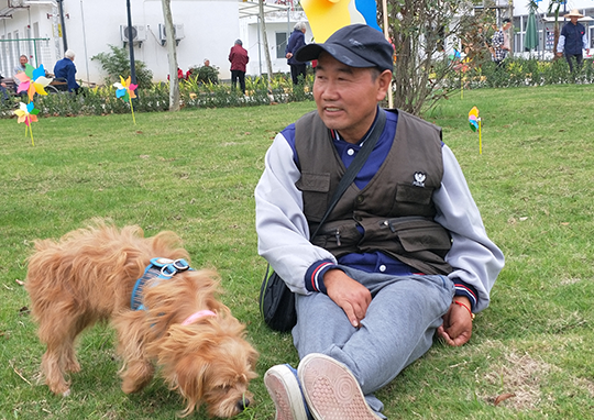 北京遛狗活动